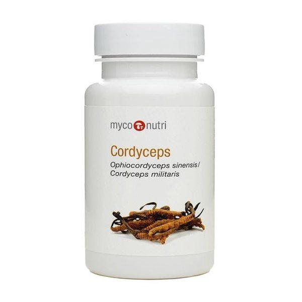 Cordyceps image