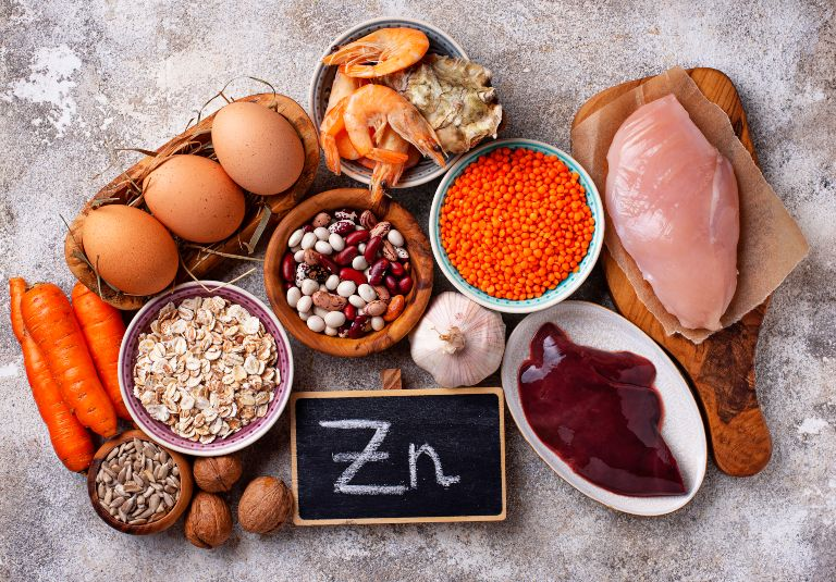 function of zinc in the body